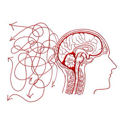 Alpha Brain Alternatives