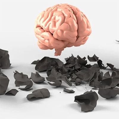Alpha Brain Scandal